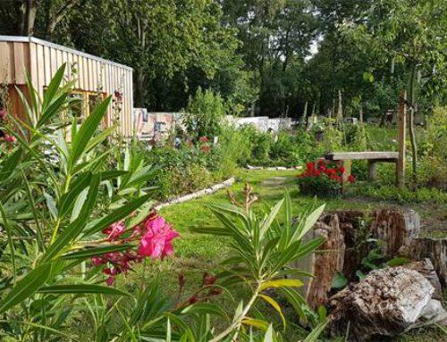 Grenzgärten im Mauerstreifen: Stacheldraht und Gartenglück